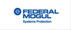 manufacturer: Federal Mogul